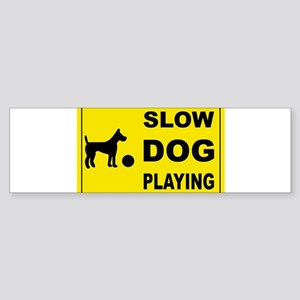 SLOW DOG PLAYING Bumper Sticker